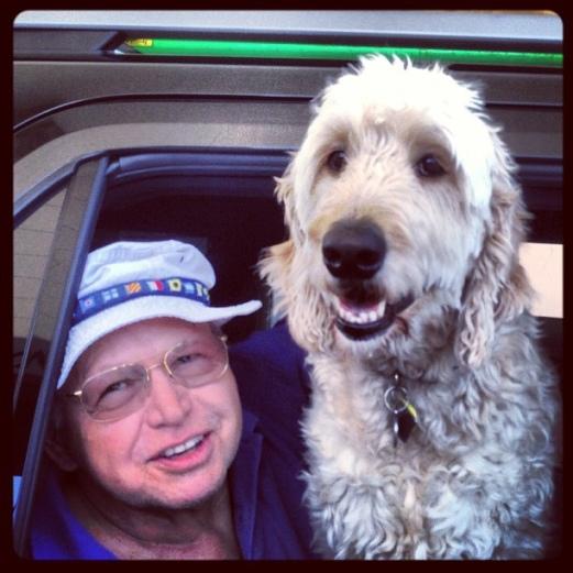 senior-dog-senior