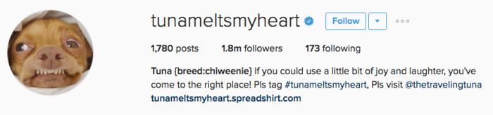tunameltsmyheart instagram