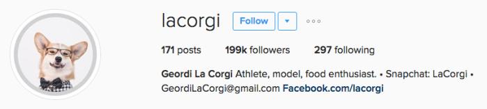 lacorgi instagram